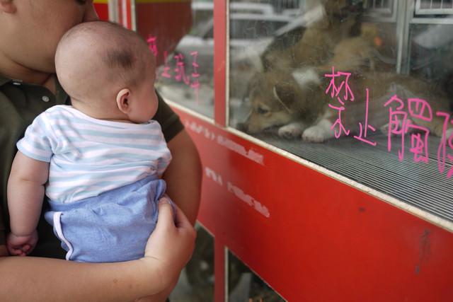 [育兒日記]新莊媽媽的店溜小孩-餐椅怎麼選? - 愛小宜的甜蜜小窩