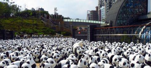 ♪1600紙貓熊_快閃行動,大安森林公園_全程播報