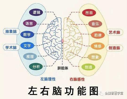 什麼是右腦 開發 ? - ITW01