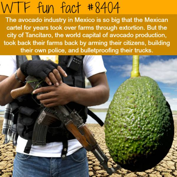 You Just Need To Learn Some New Facts Today (39 pics ...