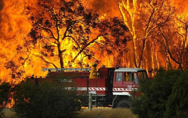 bush fire fighters
