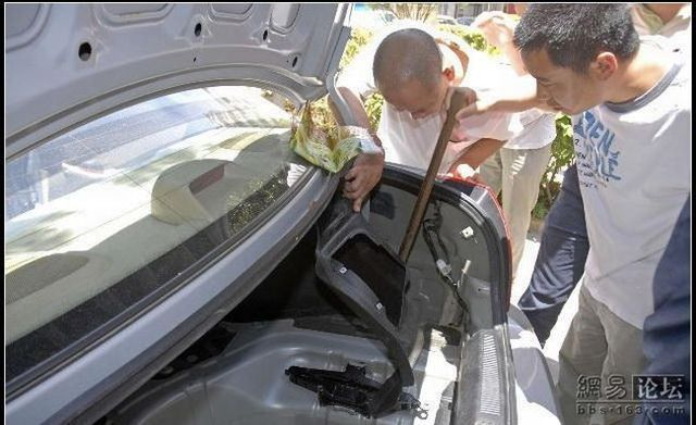 Bad surprise in the car (11 photos)