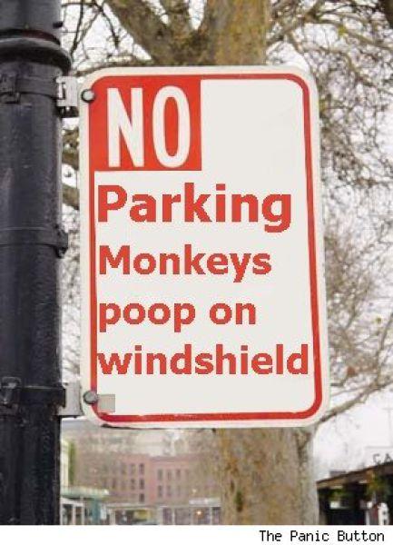 Funny No Parking Signs 30 pics  Izismilecom