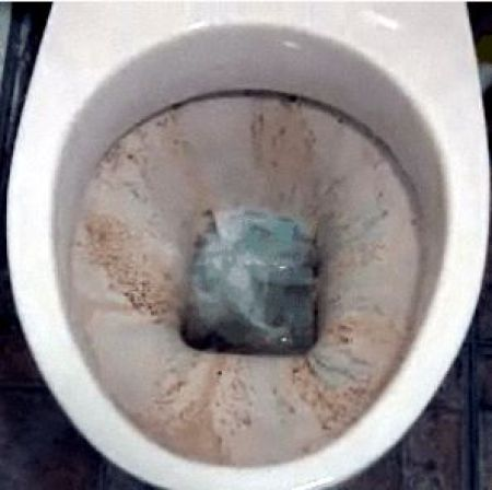How to Clean Toilet (4 pics)