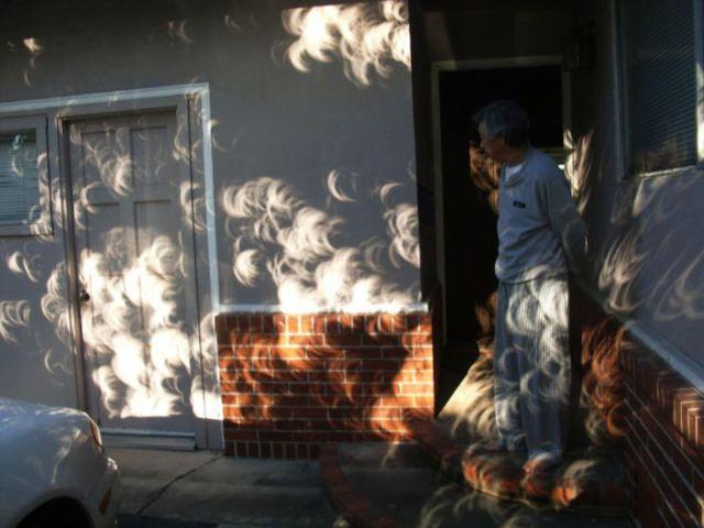 Beautiful Annular Solar Eclipse Photos