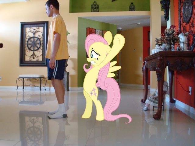 Obsessive Bronies Photoshop Themselves Pony Girlfriends