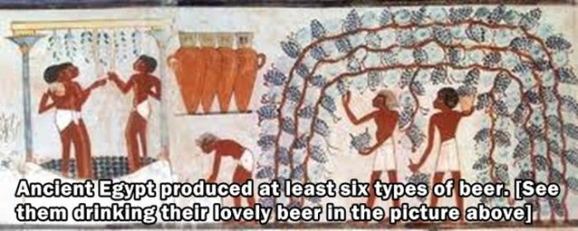Fun Facts about the Past