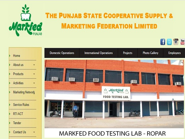 Punjab Markfed Recruitment 2021 for 227 Salesman Assistant Accountant and Other Posts, Apply Online @markfedpunjab.com