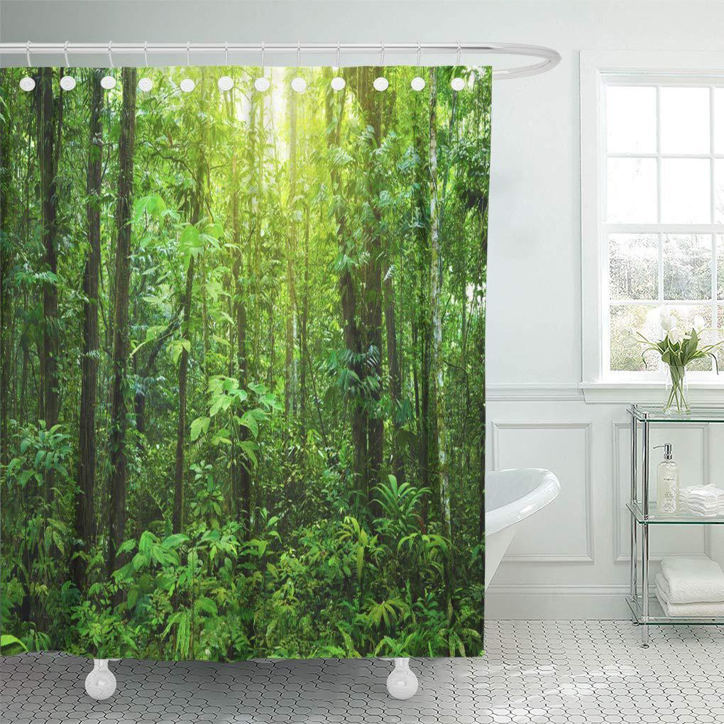 green rainforest dense forest tropical morning sunlight shine shower curtain 66x72inch 165x180cm