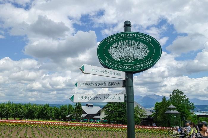 [北海道] 擁有夢幻薰衣草田的富田農場,夏天的魔法才悄悄開始 北海道巴士旅-4