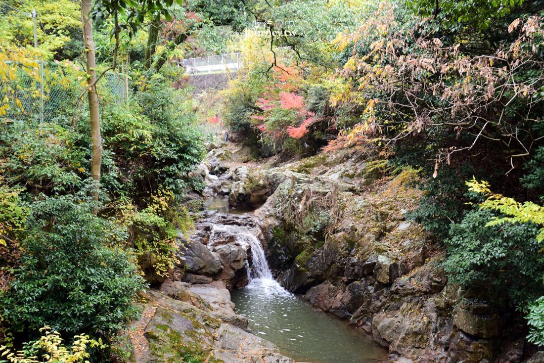 水間鐵道,水間觀音寺,戀人聖地,愛染堂,大阪景點,日本,貝塚市