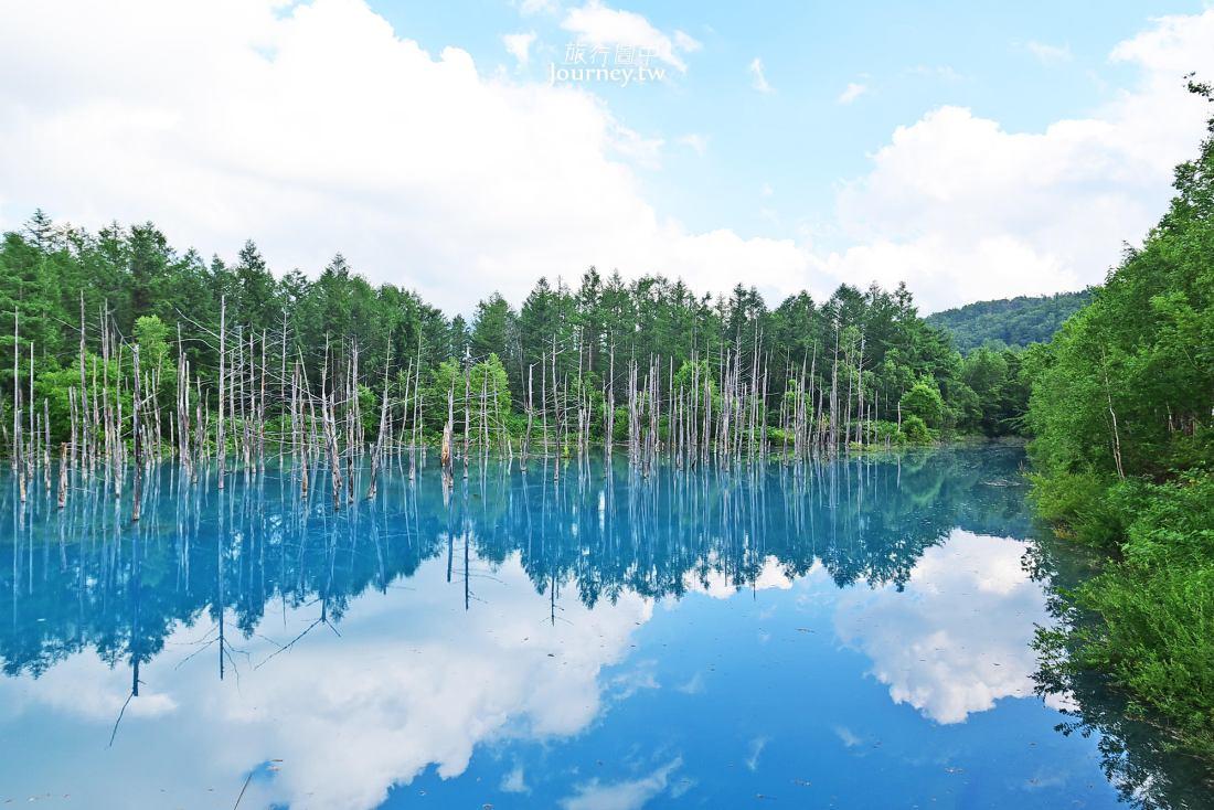 日本,北海道景點,美瑛,青池,