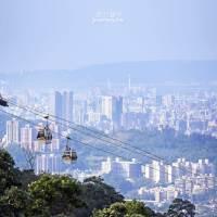 台北、文山|搭貓空纜車上山放空・貓空樟樹步道芬多精一日遊