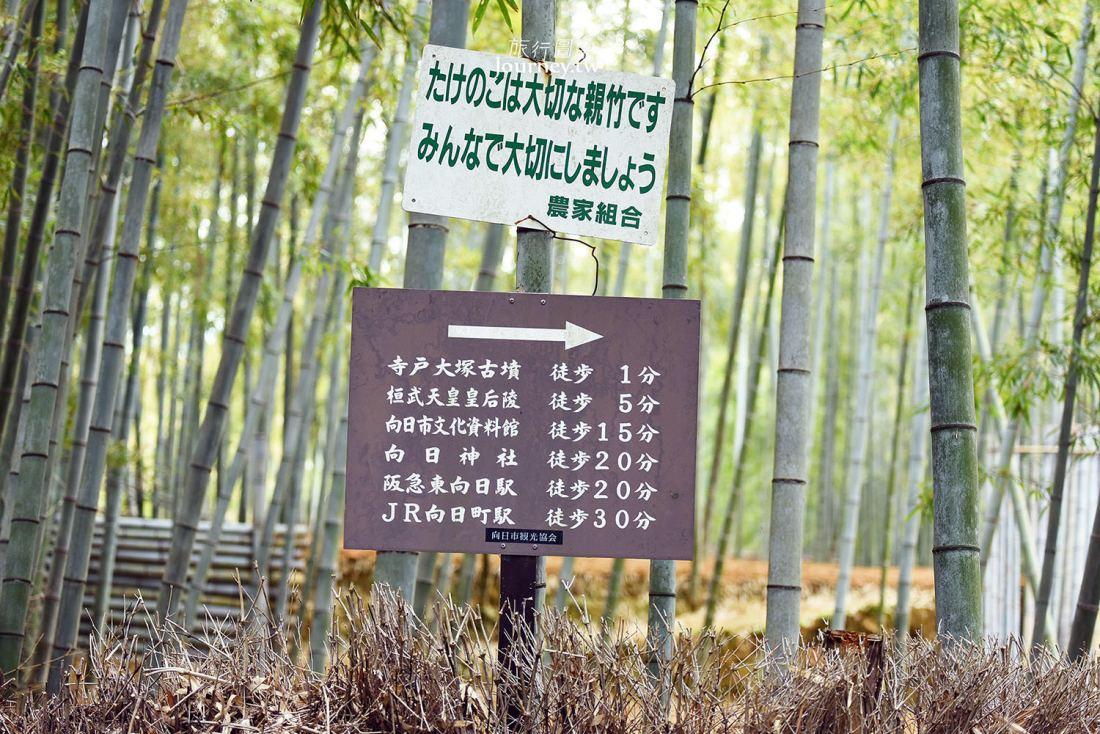 京都,向日,竹の径,竹林公園,京都景點,竹林小徑