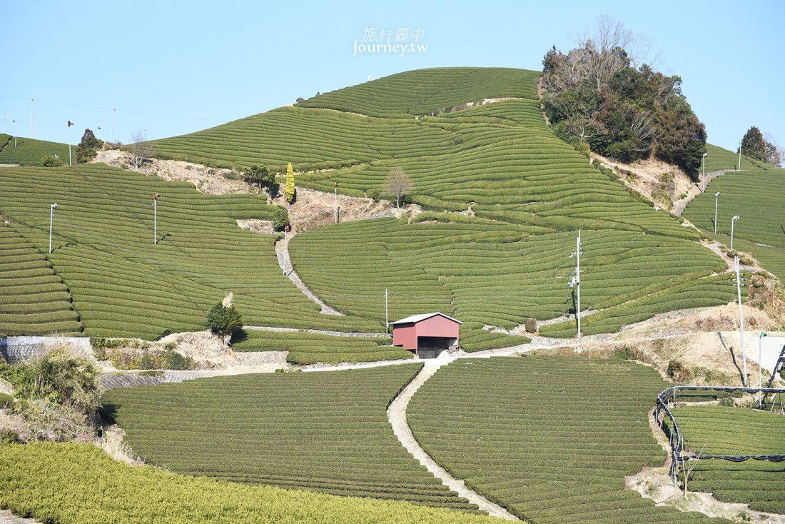 京都,和束,宇治,茶之京都,和束の茶畑,d:matcha Kyoto