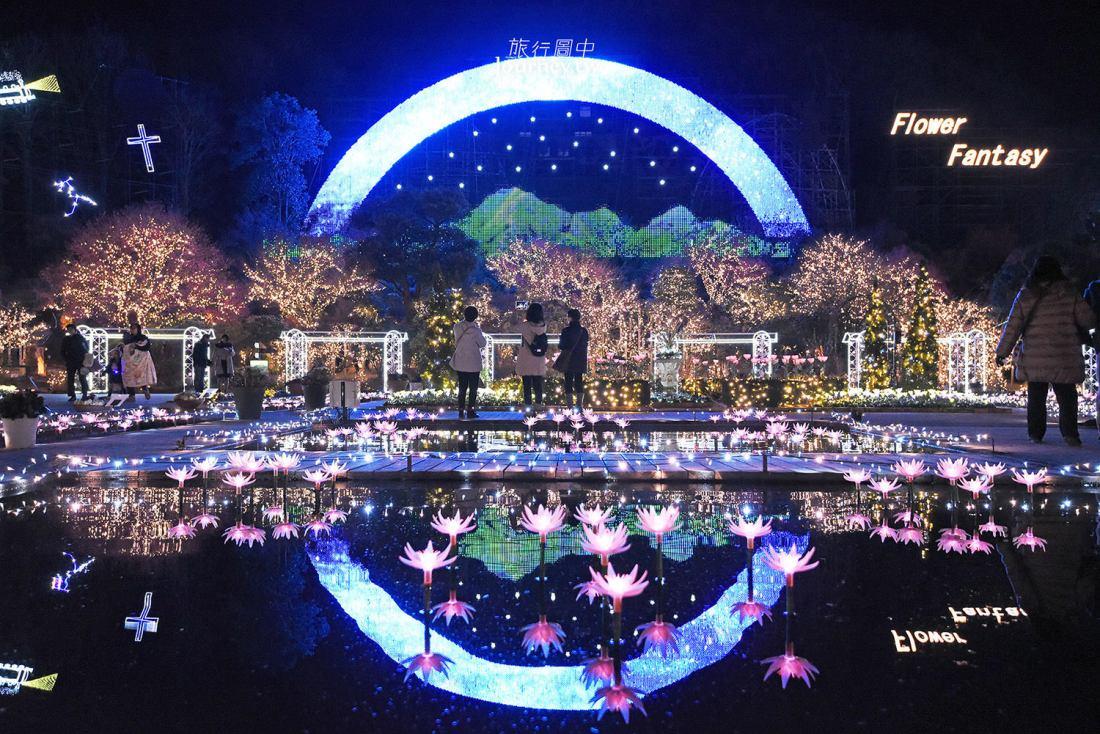 櫪木,足利,足利花卉公園,花卉幻想,光之花庭園,光の花の庭