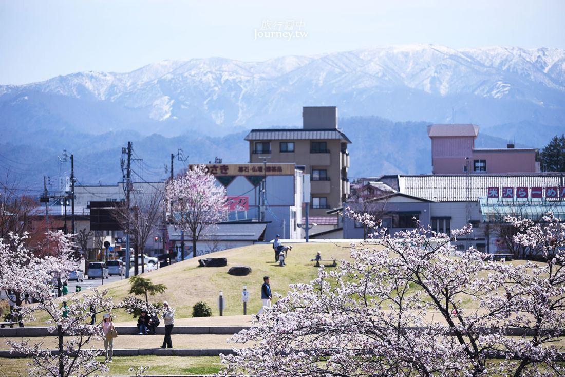 山形,米澤,米澤城跡,上杉神社,上杉城址公園,櫻花