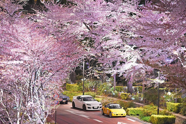 東京、六本木|東京中城・繁華夜色中的櫻花小徑(東京ミッドタウン) - 許傑,旅行圖中