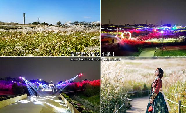 首爾紫芒節\秋天的藍天公園(天空公園)好浪漫!(詳細路線帶你去)