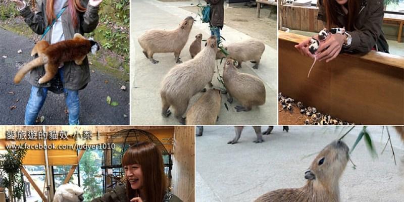【日本長崎】西海市\長崎BIO PARK動物園,參見超可愛水豚君,大人小孩都瘋狂的與多種動物親密接觸!