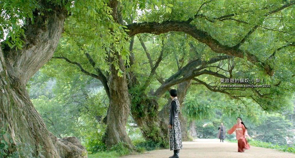 步步驚心麗20-盤古池2 - 愛旅遊的貓奴‧小梨