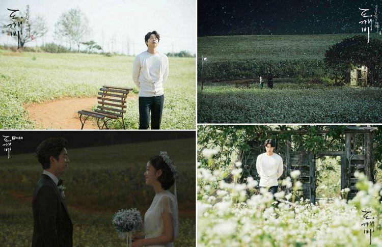 【韓劇景點】《孤單又燦爛的神-鬼怪》鬼怪麥田之鶴園農場(鶴苑農場)怎麼去?