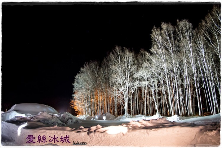 [日本。北海道] TOMAMU 星野 リゾート トマム 渡假村 (愛絲冰城篇)