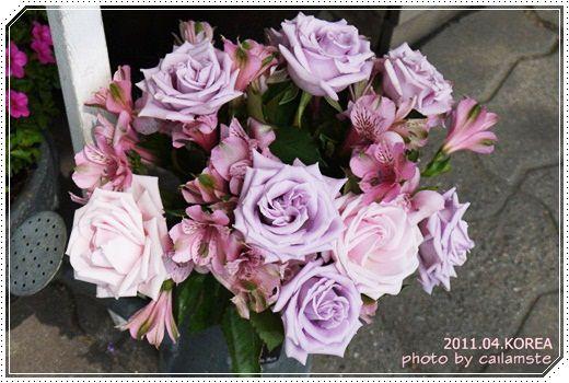 2011.04.首爾自由行  <梨大校園、婚紗街>
