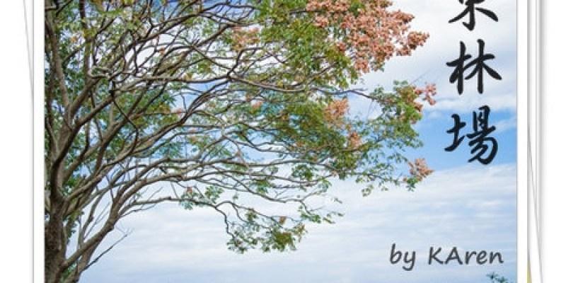 [走走] 宜蘭羅東林場~放鬆休閒的好去處