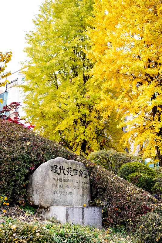 [Seoul。楓] 現代苑西公園 현대원서공원 賞楓