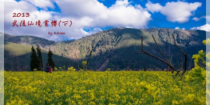 [台中和平] 2013 武陵仙境賞櫻 (下)