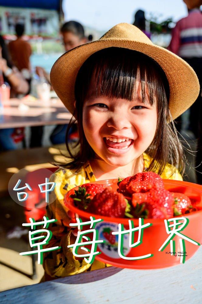 草苺世界   台中潭子親子遊,來採草苺