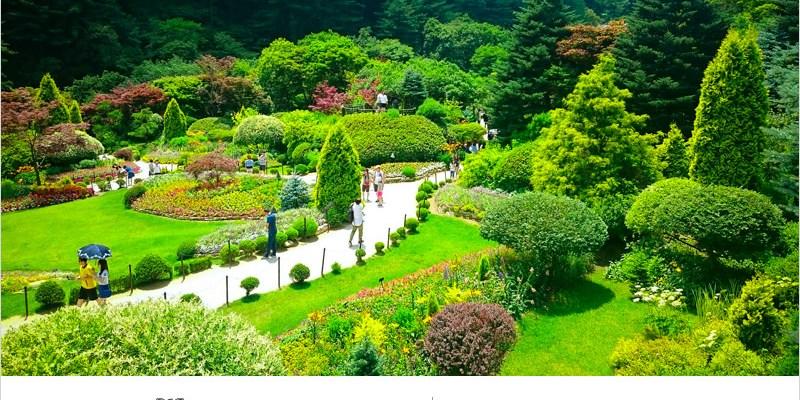 韓國旅遊   晨靜樹木園(京畿道)-美到不要不要的。以花朵植物打造出的美麗庭園,更是韓劇原來是美男、雲畫的月光拍攝景點。