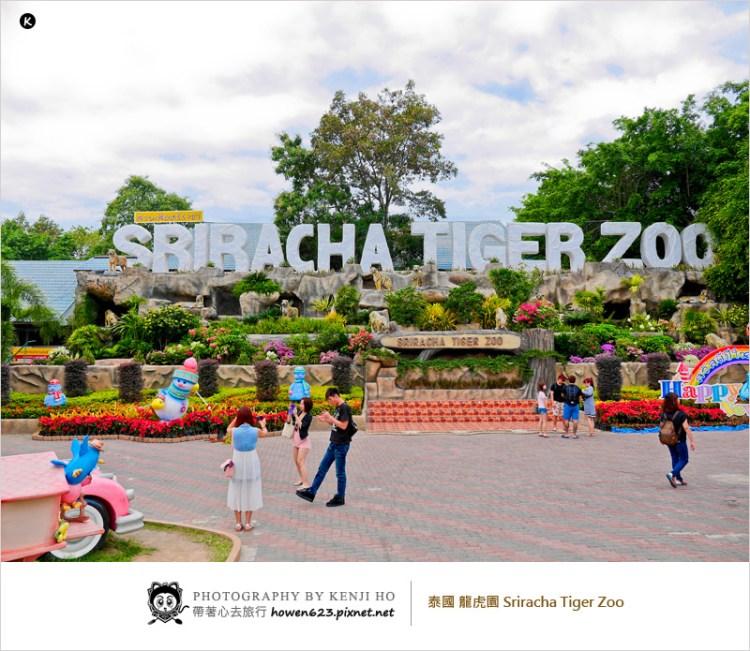 2017泰國芭達雅旅遊/自由行   龍虎園 Sriracha Tiger Zoo。看豬算數賽跑、與小老虎合照及陪喝奶、欣賞好看刺激的鱷魚表演。