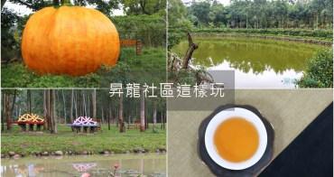 苗栗造橋深度旅遊 龍昇社區桉心園 在地社區這樣玩