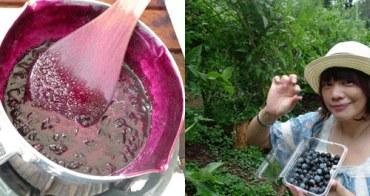 日本千葉縣  ★ 藍莓果醬製作體驗記