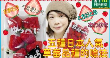 五種日本人氣草莓品種的唸法   <杏子日語教室>14