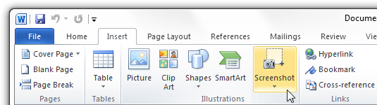 screen capture in office 2010