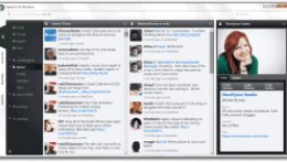 View Twitter Profiles with Seesmic