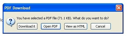 Download PDF in Firefox