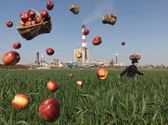 """Extrait de la série """"D'après moi, le déluge"""". Les pommes."""
