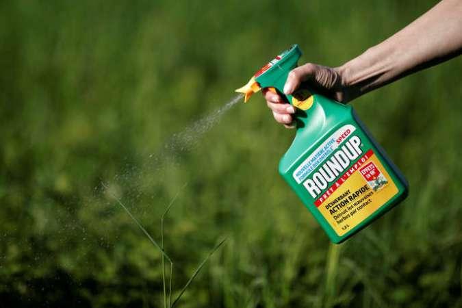 Pulvérisation de Roundup, herbicide de la compagnie américaine Monsanto, dont le glyphosate est le principe actif, dans un jardin près de Paris, en 2018.
