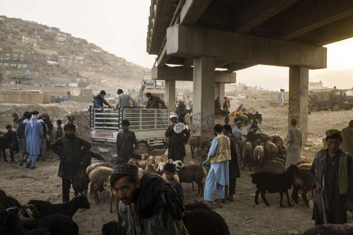 Des bergers avec leurs moutons lors d'une vente dans un bazar de Kaboul, le 10 août.
