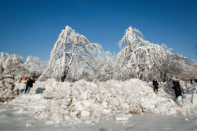 Frozen landscape in Niagara Falls State Park, USA on February 21, 2021.