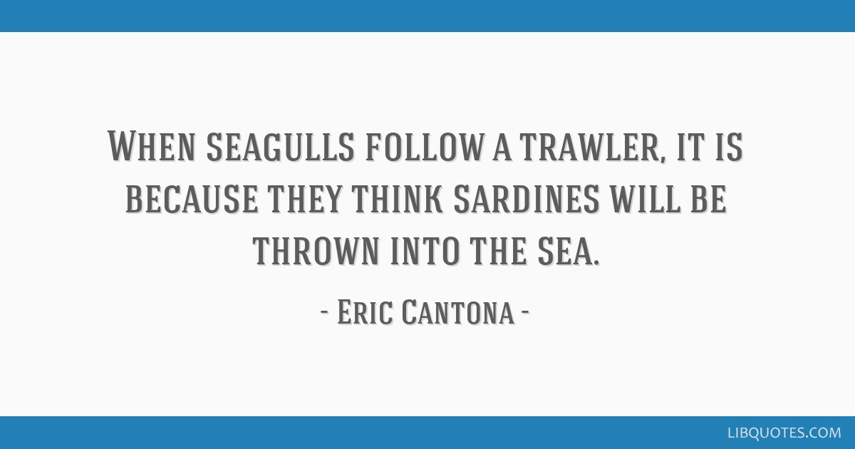 Starting with a quote from william shakespeare, cantona then moved on. When Seagulls Follow A Trawler It Is Because They Think Sardines Will Be Thrown Into The