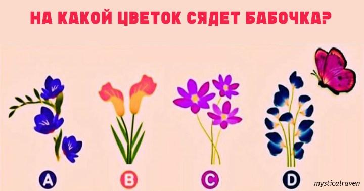 Тест на отношения: какой цветок выберет бабочка?