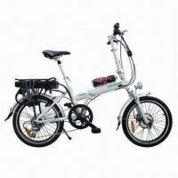 Rack Battery Alloy Frame Folding Electric Bike with