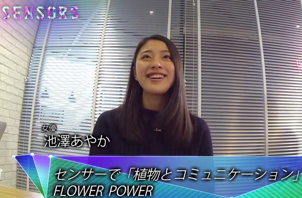 ギーク女優・池澤あやか、IoTの魅力は「植物とか金魚と会話できるところ」–女性クリエイター座談会