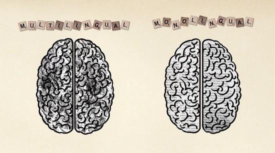 バイリンガルのメリットを脳科学の視点で解説 - ログミー