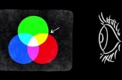 暗いところで色がわからなくなるのはなぜ? 人の視覚の仕組みを解説